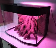 Akvarijum sa talasastim staklom i 3D pozadinom