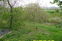 Kucu Arandjelovac