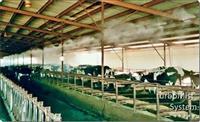 Hladjenje farmi maglom