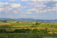 Poljoprivredno zemljiste povoljno-Petrovac