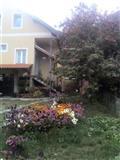 Izdavanje apartmana u Brzecu, Kopaonik
