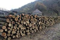 Prodajem drva za ogrev- Bagren