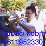 Trubaci pozarevac 0611952330
