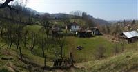 BOSUTA seosko imanje na 3 ha zemlje