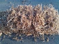 Bale sojine slame na prodaju