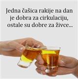 Rakija Sljivovica