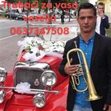 Trubaci Despotovac 0637347508