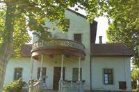 Vila i kuca na Palicu
