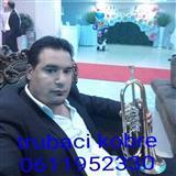 Trubaci leskovac 0611952330