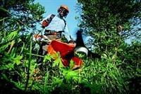 uslužno košenje trave motornim trimerom Beograd