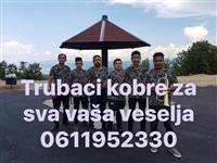Trubaci jagodina 06119522330