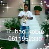 Trubaci aleksinac 0611952330