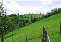 Vikendicu / imanje u selu okolina Leskovc