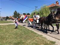 Fijakeri i konji