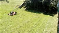 Kosenje trave Nis