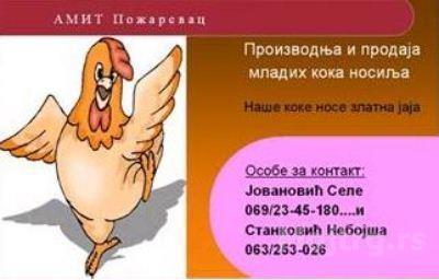 825290a91c3743d290575bbab0ffa0ff