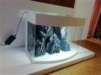Akvarijum sa polukruznim staklom i 3D pozadinom