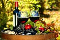 Domace vino i rakija