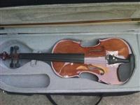 Violina Studentska