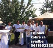 Trubaci raca 0611952330