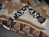 Sal Partizan
