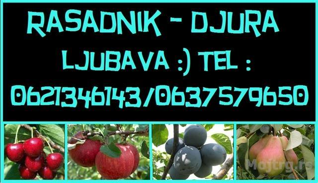 b5393a42e4764baebd2da96fa958d0bd