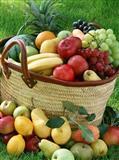 Branje voca - potreban posao branja voca