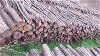 Ogrevno drvo bagrem