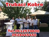 Trubaci kragujevac tel.0612579600