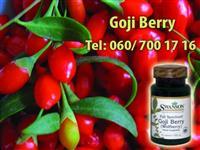 Goji Berry za dobrobit celog organizma