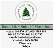 Kivi - Kvalitetne sadnice