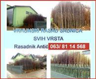 Najbolje sadnice iz Srbije