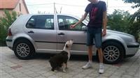 VW Golf 4 tdi -02 18000km EXTRA