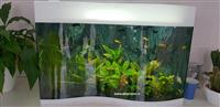 Pravljenje akvarijuma po merama