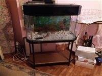 Prodajem Aquarium