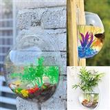 Mini zidni akvarijum