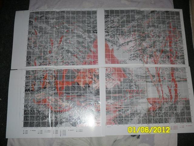 CC1EA19C7C84483383AE216CF34021D9